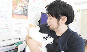 地域での野良猫問題も含め、大切な命を守る地域猫・保護犬の活動